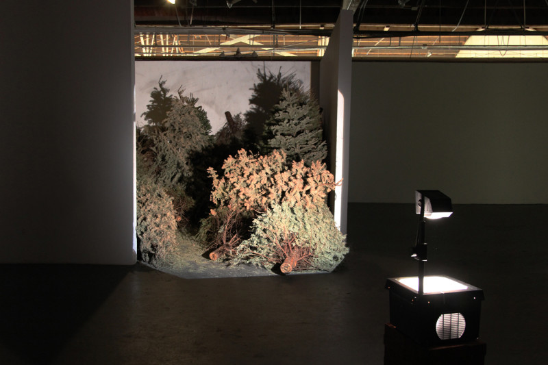 Life of Objects: phase 1, Overhead projector, bricks, 58 found Xmas trees, Dimensions variable, 2011